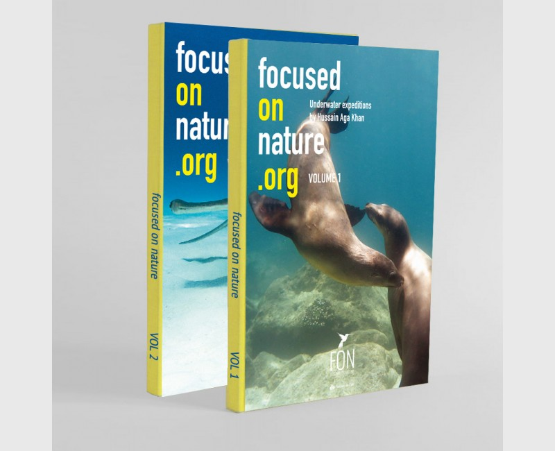 FOCUSED ON NATURE .ORG