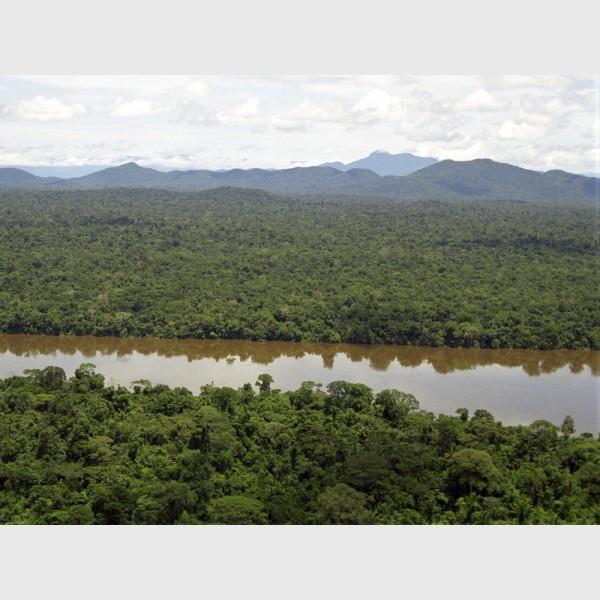 The Orinoco from a peak - Venezuela, 1999