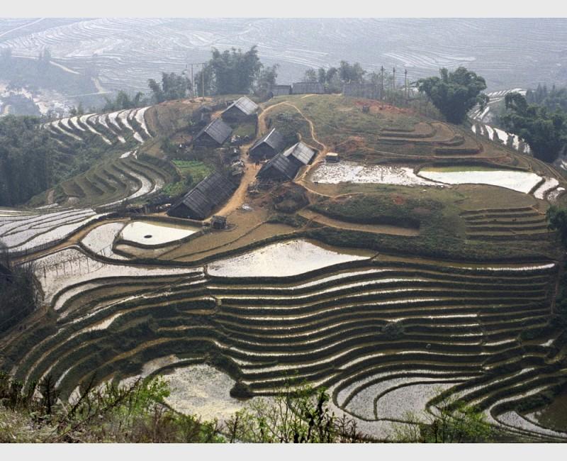 Vietnam, 2001