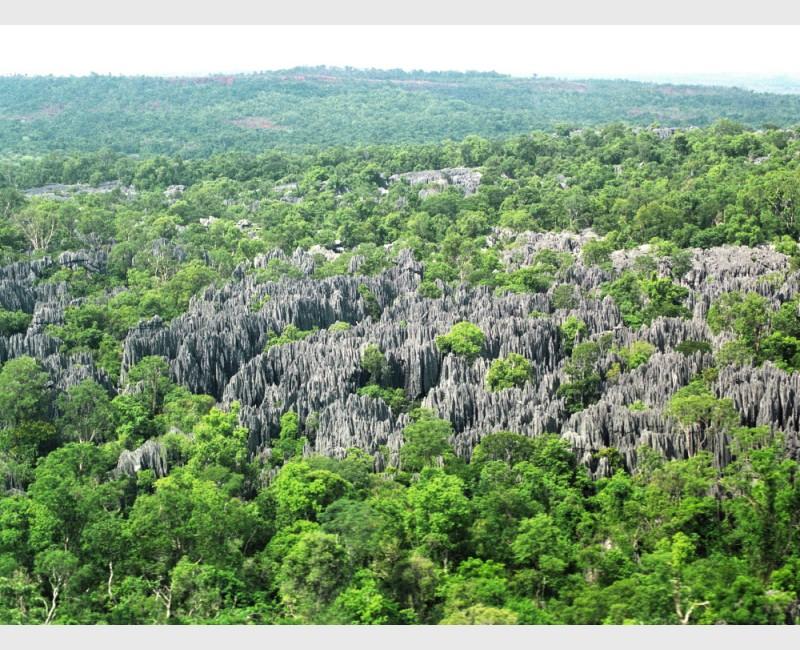 Madagascar, 2005